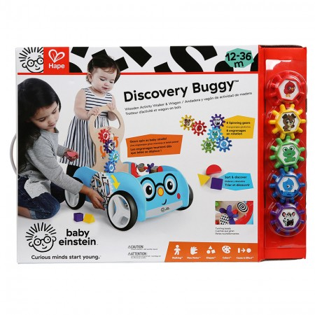 discovery buggy